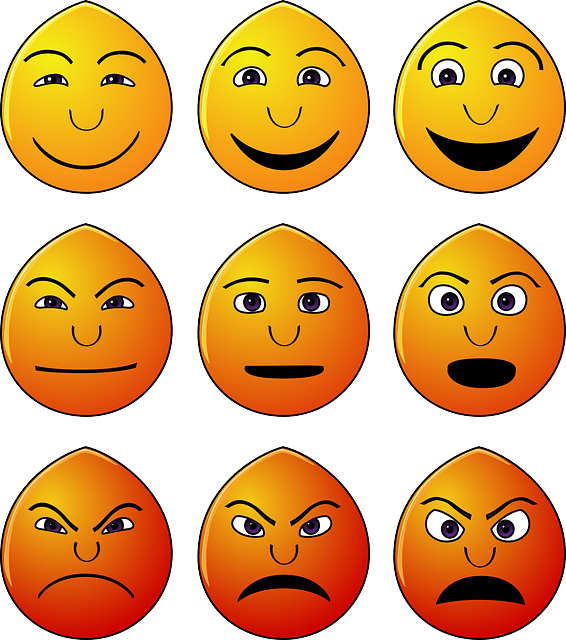 emotions in¨work photo